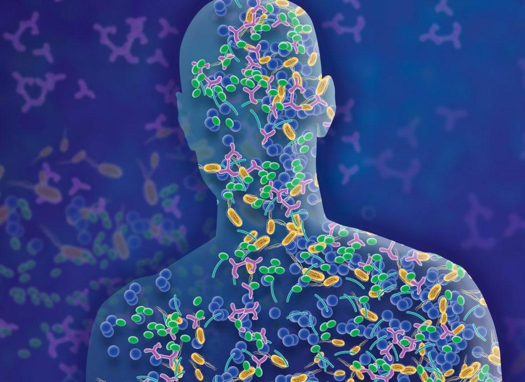 Microbiome and TMAO