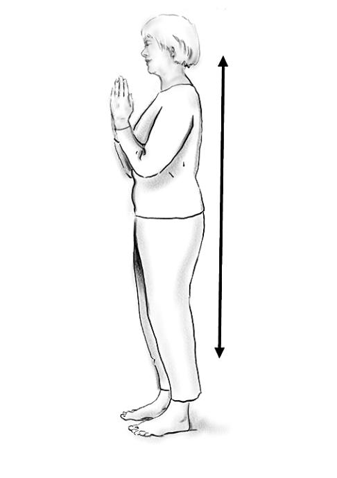 Sun Salutation Position One