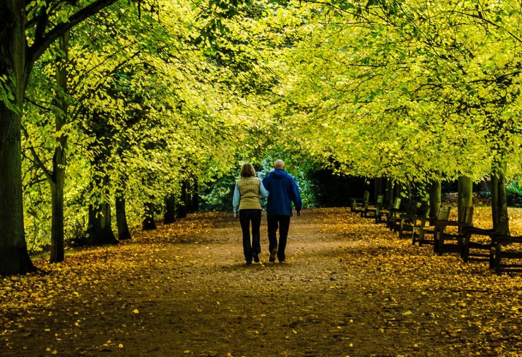 Walking exercise -Garry Knight